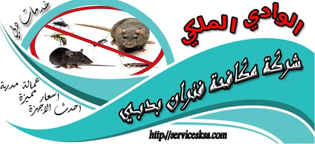 شركة مكافحة الفئران فى دبى